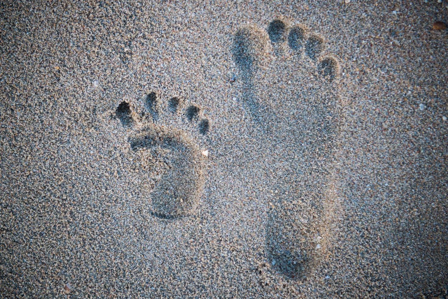 närbild på höger mänskligt fotavtryck bredvid barns fotavtryck på den tropiska sandstranden foto