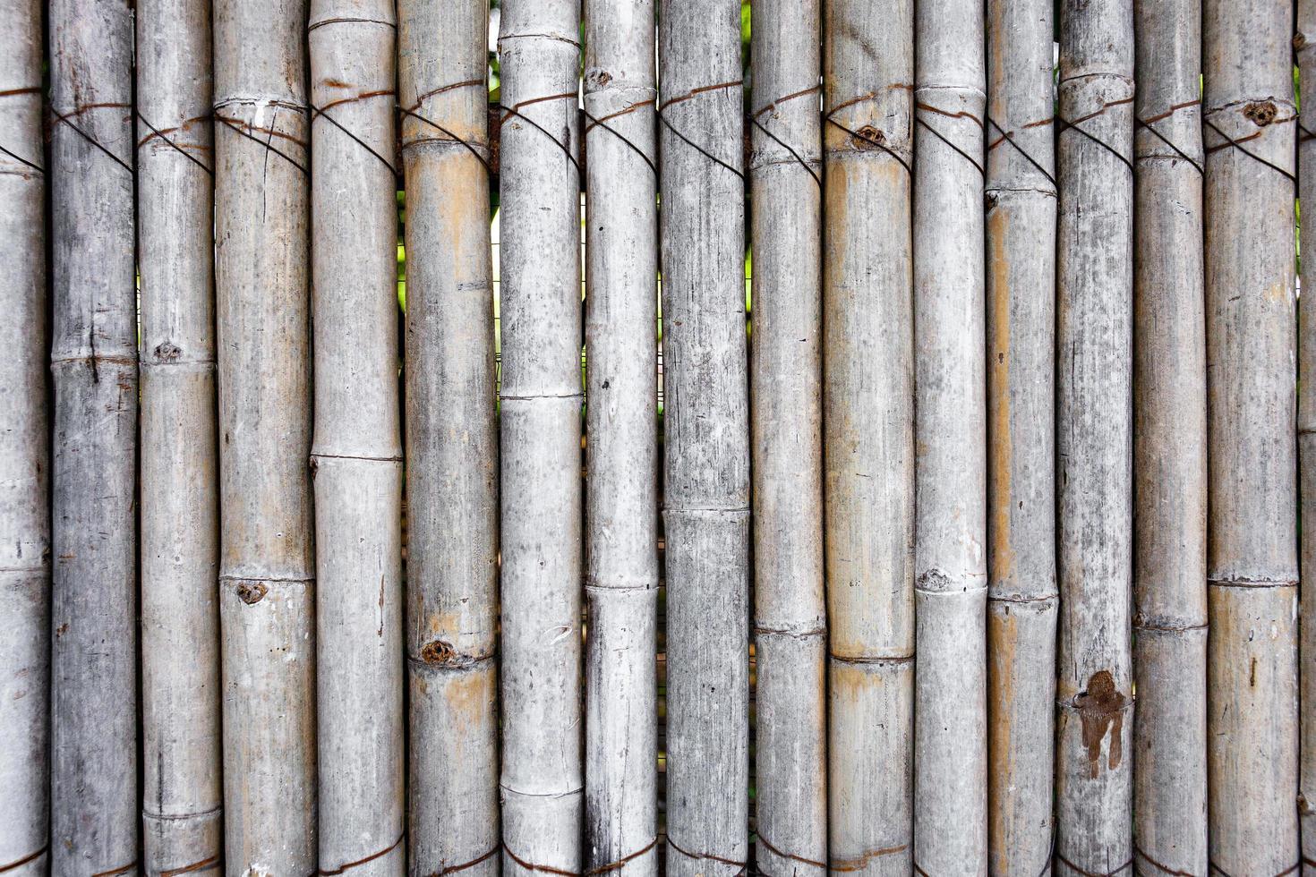 gammalt bambustängsel för trädgård, vägg eller dekoration. foto