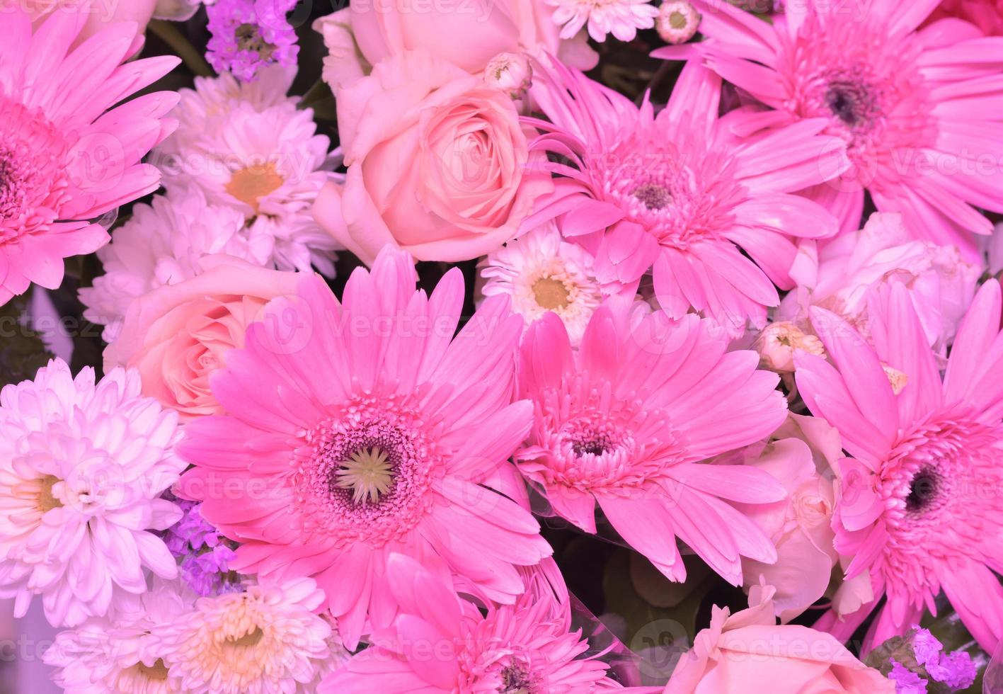 rosa ton av olika blommor, gerbera, lilja, rosor, krysantemum natur bakgrund foto