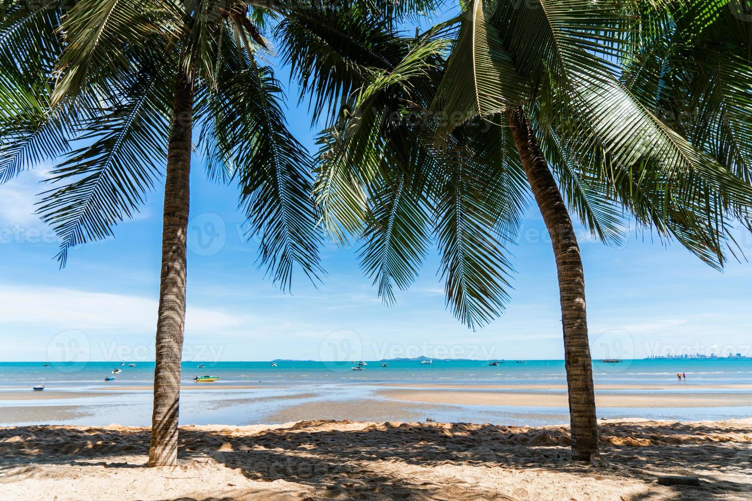 kokosnötsträd och landskapstrand med blå himmel för sommarlovet foto