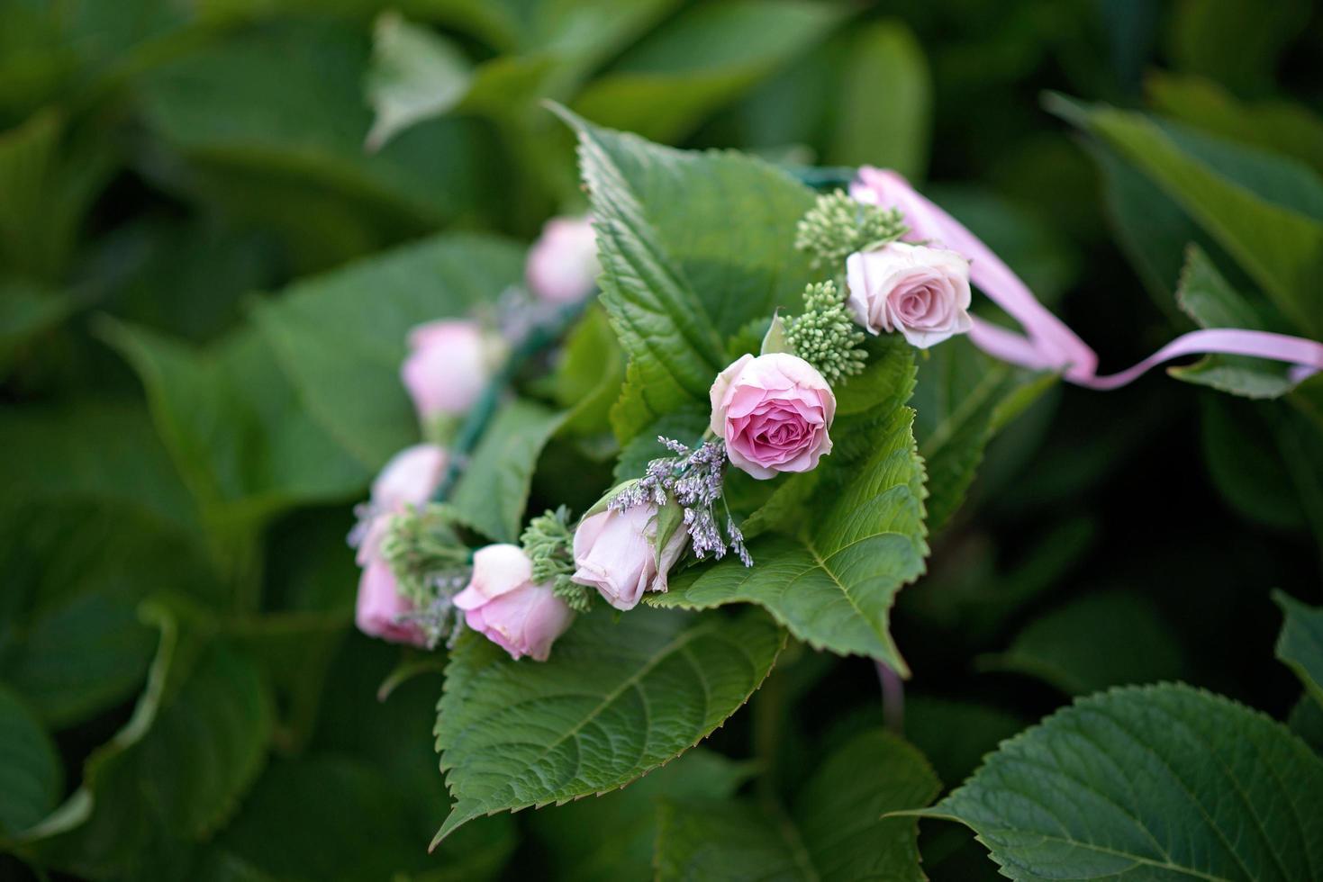 vacker söt krans av färska rosor blommor på stora gröna blad. mjukt selektivt fokus. foto