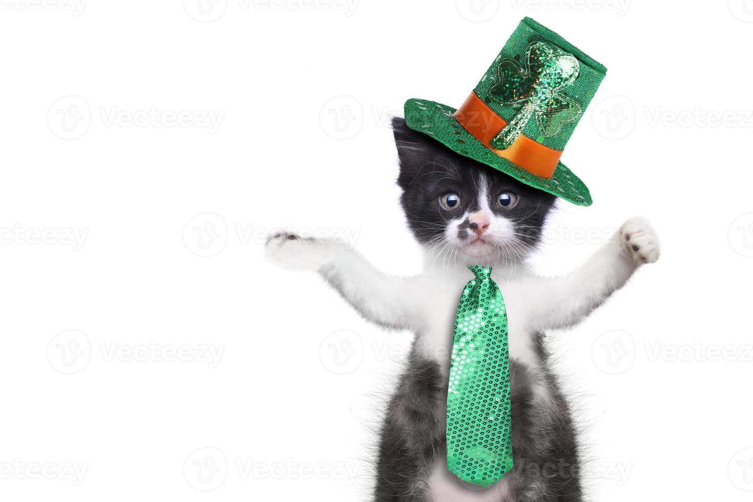 rolig kattunge som firar den amerikanska semestern saint patricks day foto
