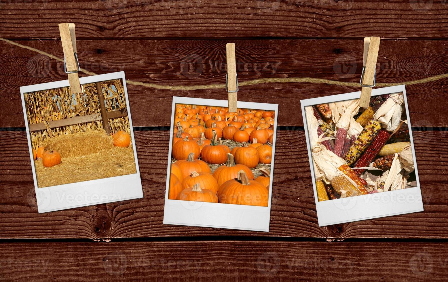 bilder på fallrelaterade bilder som hänger på ett rep foto