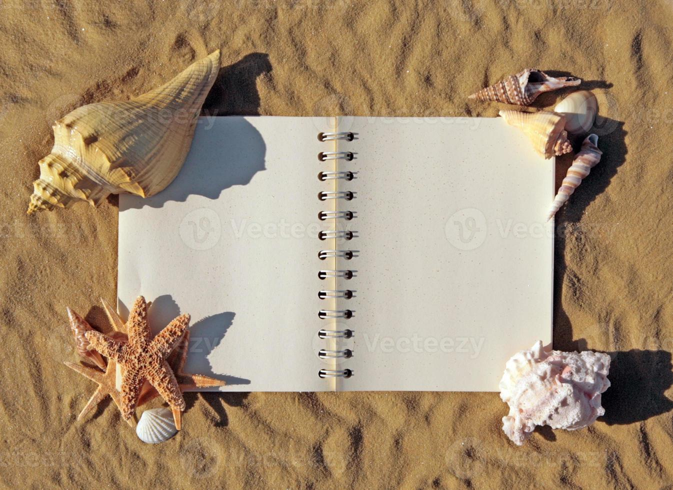 öppen bok på sanden med snäckskal som pryder den foto