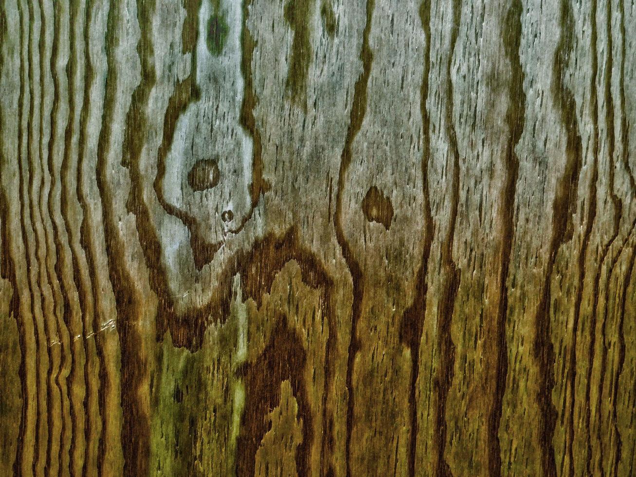 trästruktur i trädgården foto
