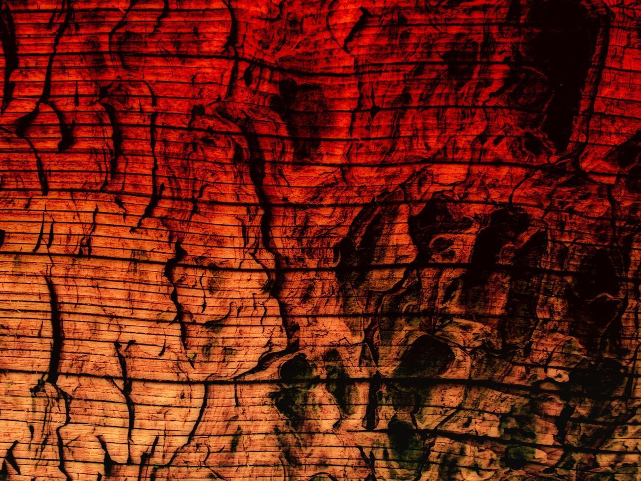 färgglad trästruktur foto