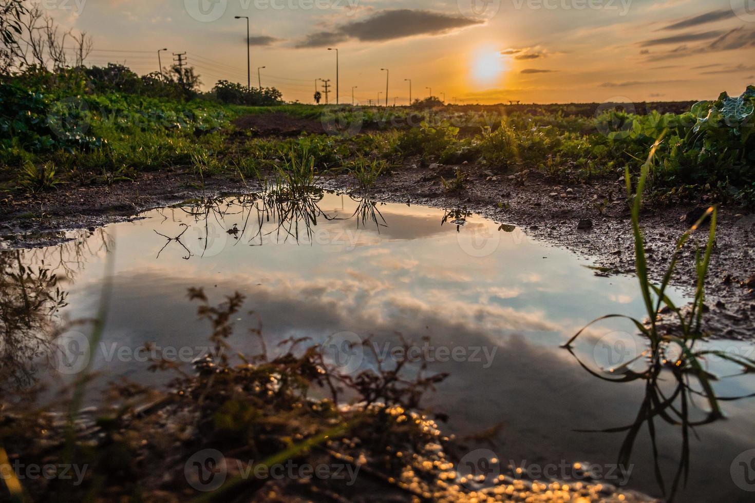 himlen reflekteras i en vattenpöl i ett fält vid solnedgången foto