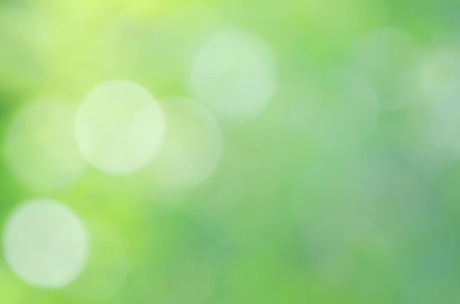 romantc gul vit grön färg bokeh sunlights bakgrunder foto