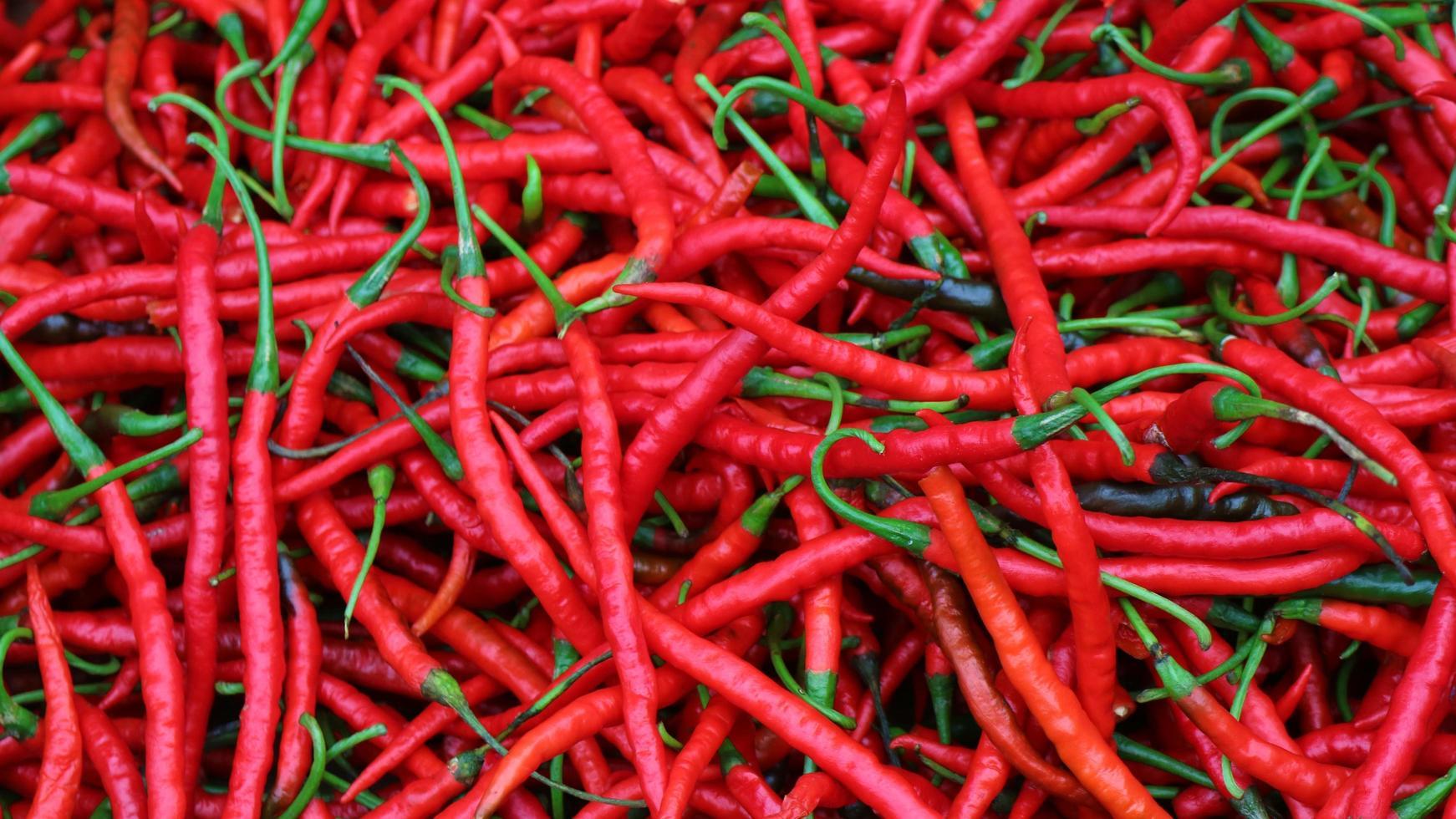 mogen red hot chili i korgen till salu på den asiatiska grönsaksmarknaden foto