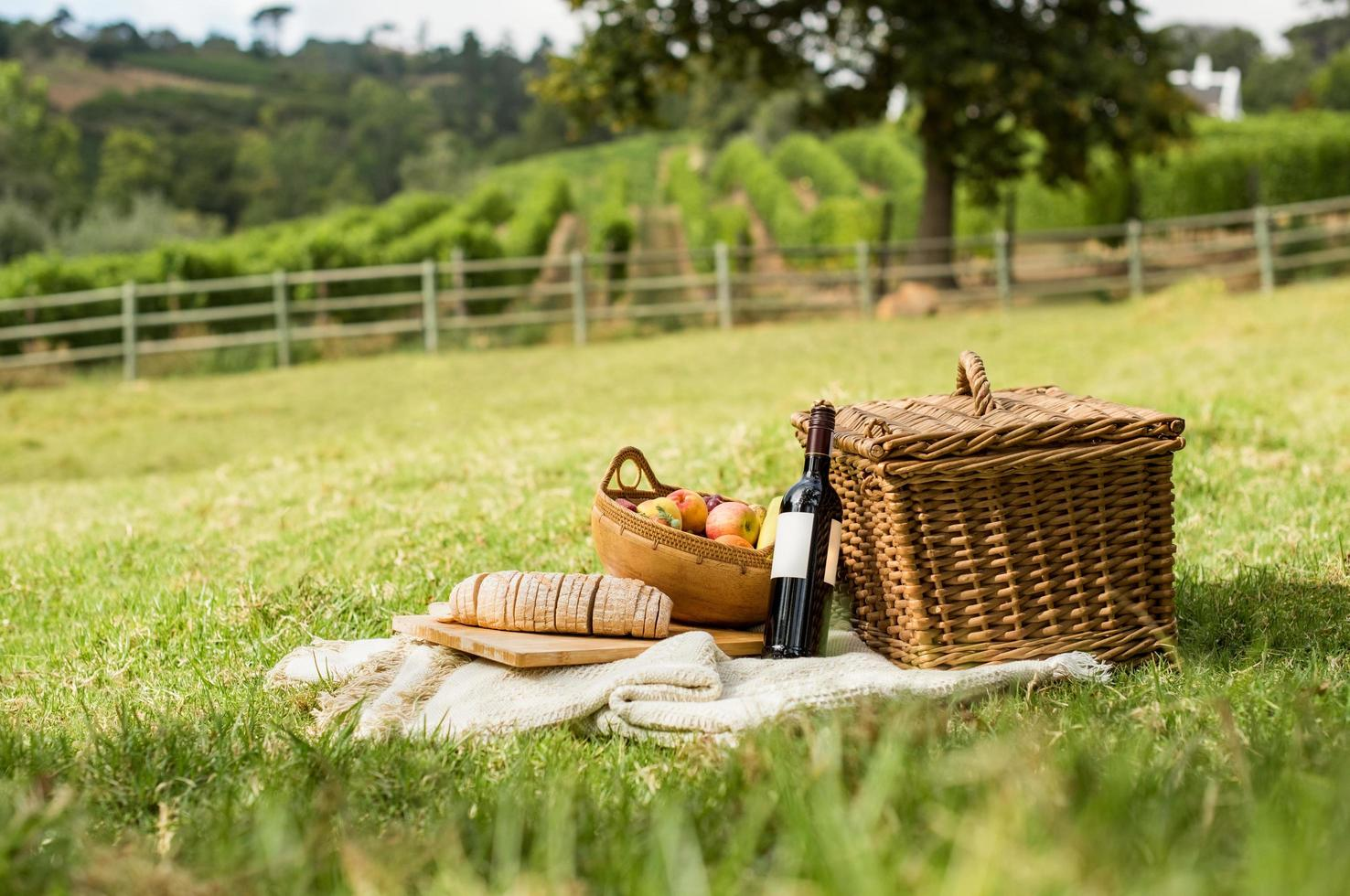 picknick i parken foto