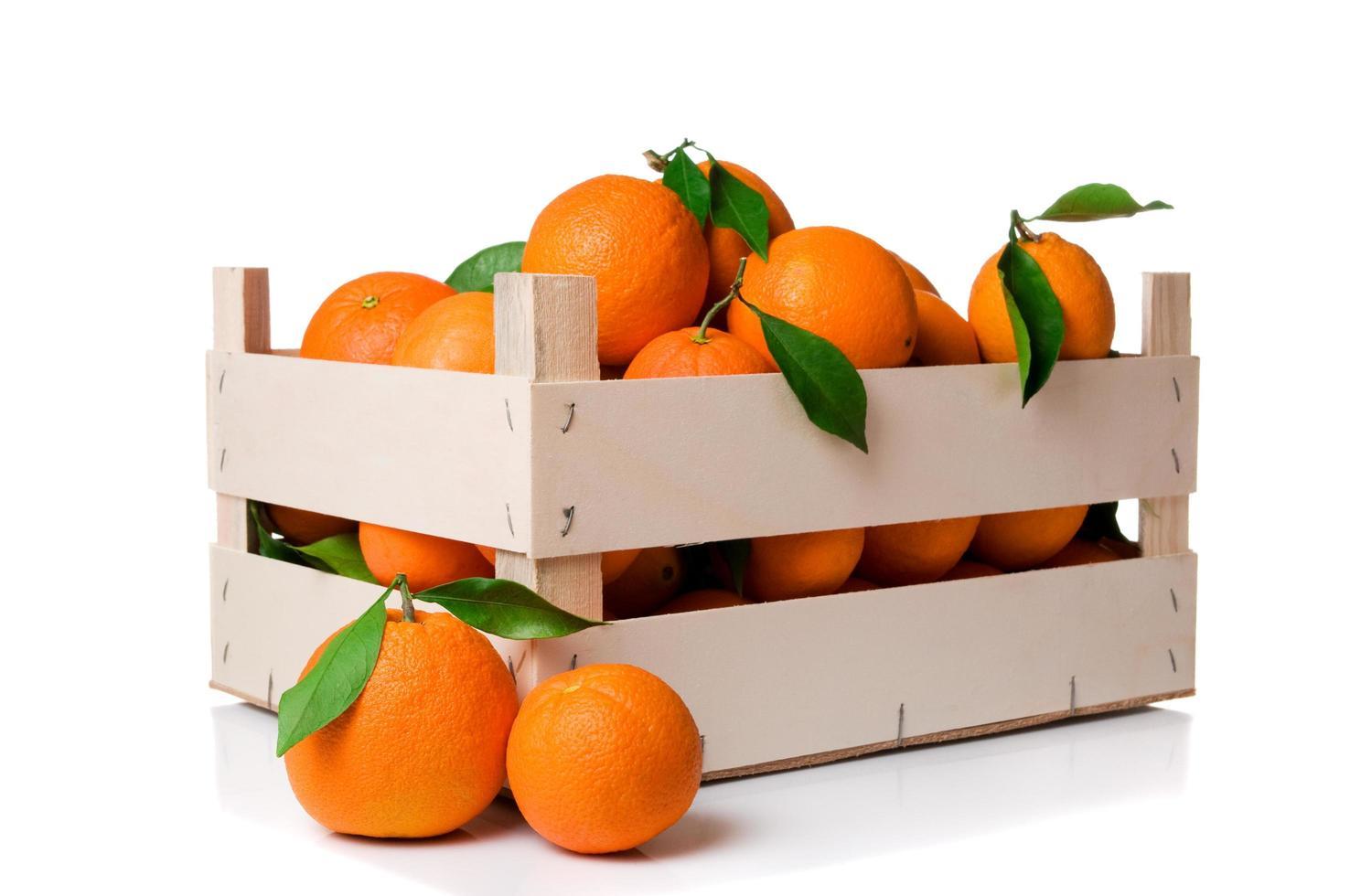 apelsiner låda isolatd foto