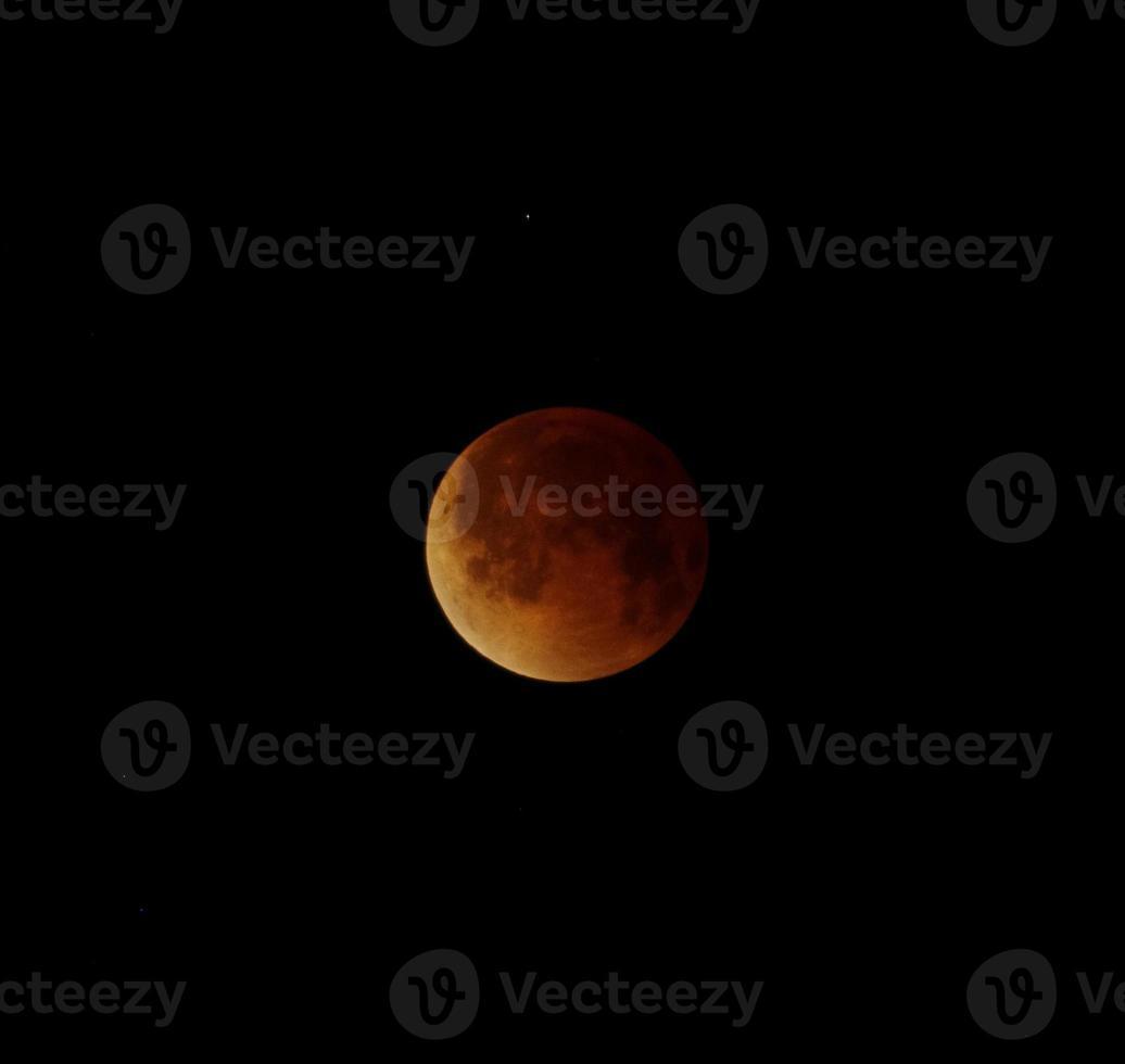 bood Moon över Miami foto