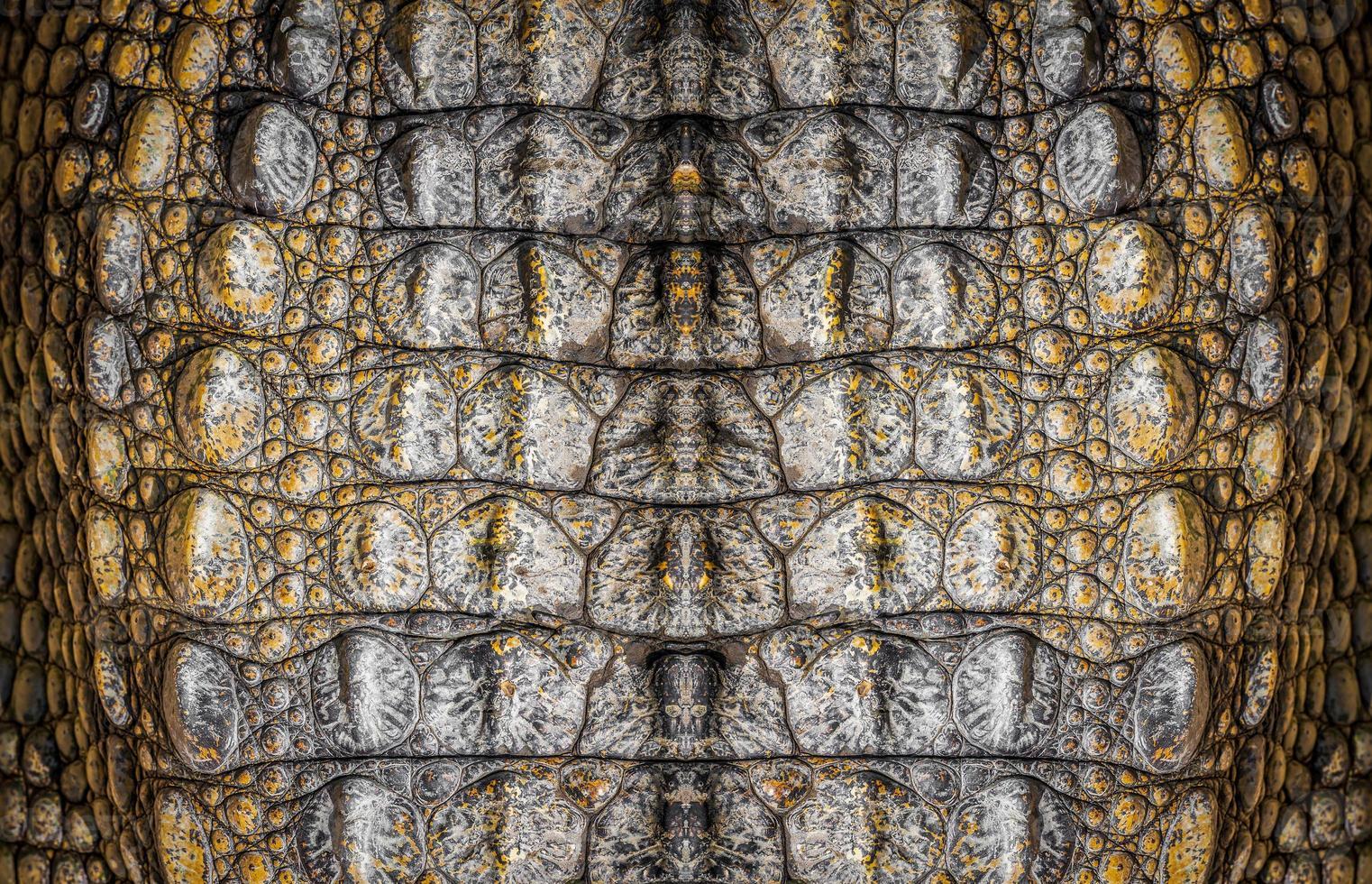 krokodilläder foto