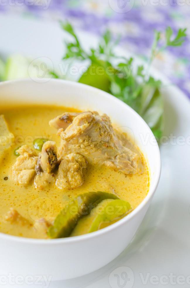 thailändsk curry foto