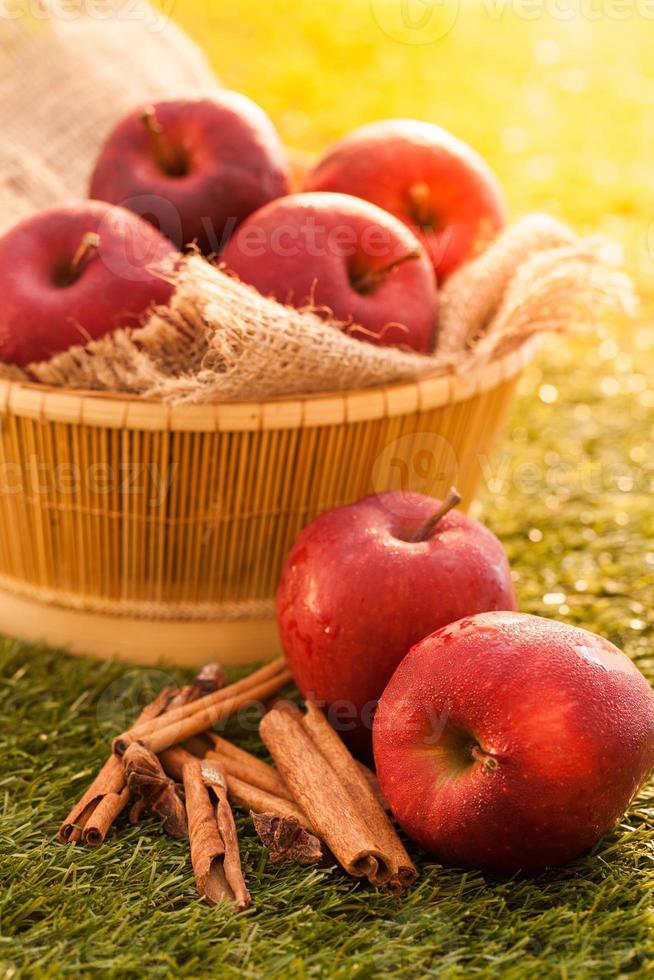 äppelcidervinäger foto