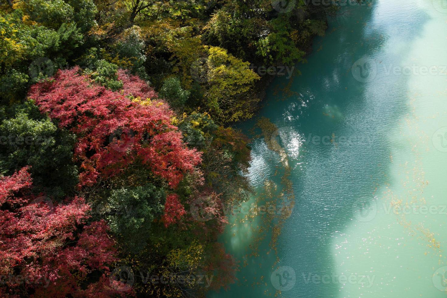 fall floden, japan foto
