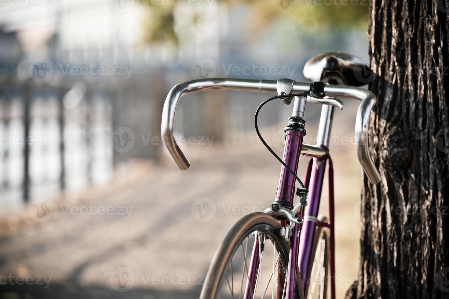 en lila cykel lutad mot ett träd foto
