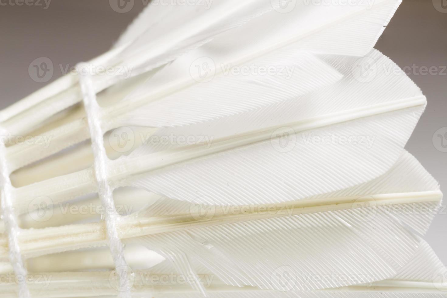 fjädern vit skyttelklocka foto