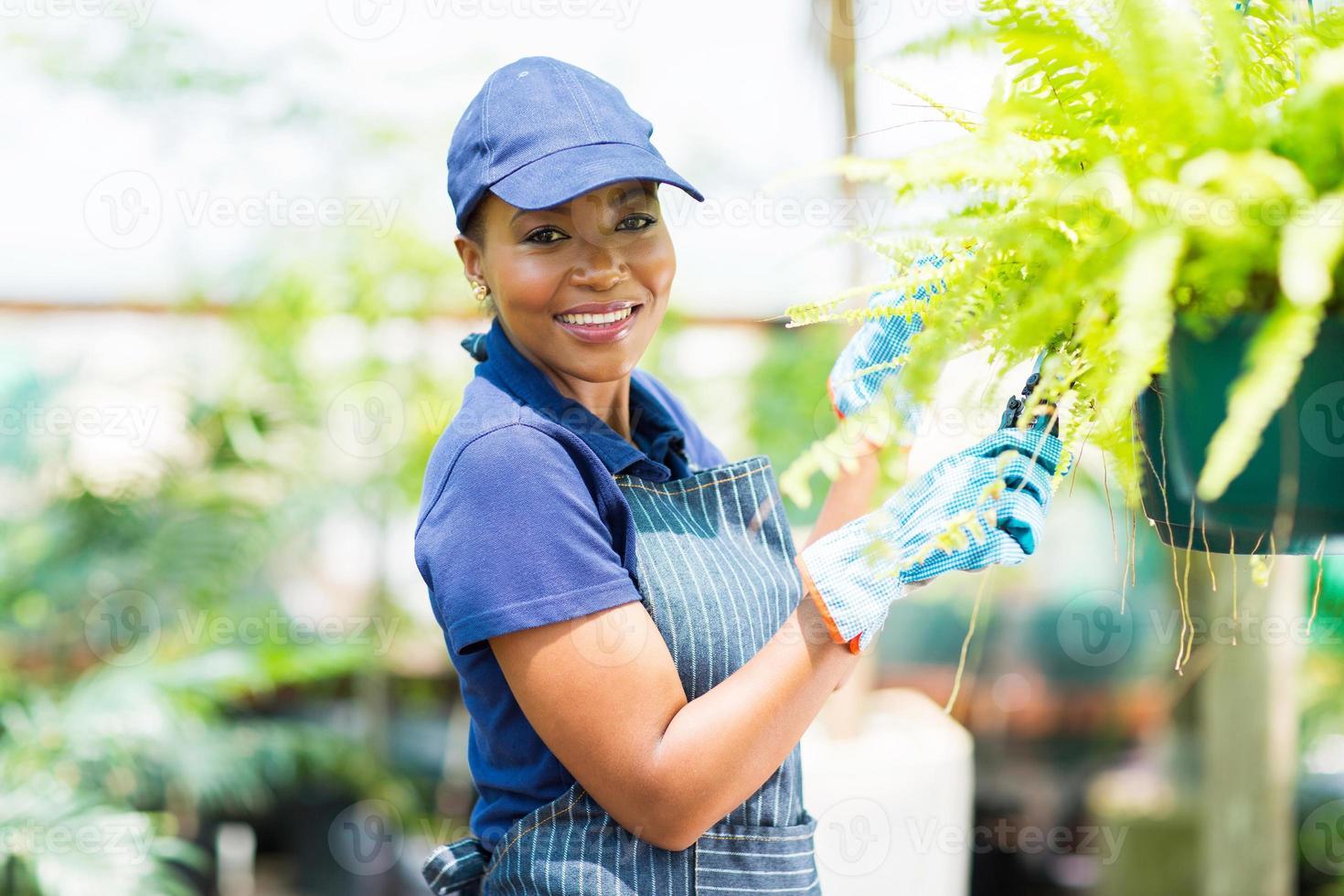 afrikansk amerikansk kvinnlig trädgårdsmästare som beskär en växt foto