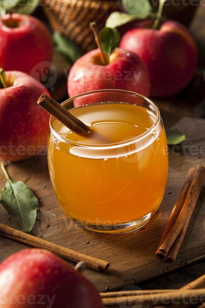 ekologisk äppelcider med kanel foto