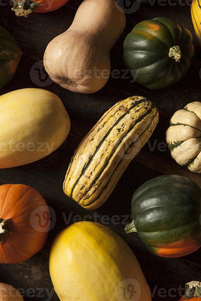 organisk blandad höst squash foto