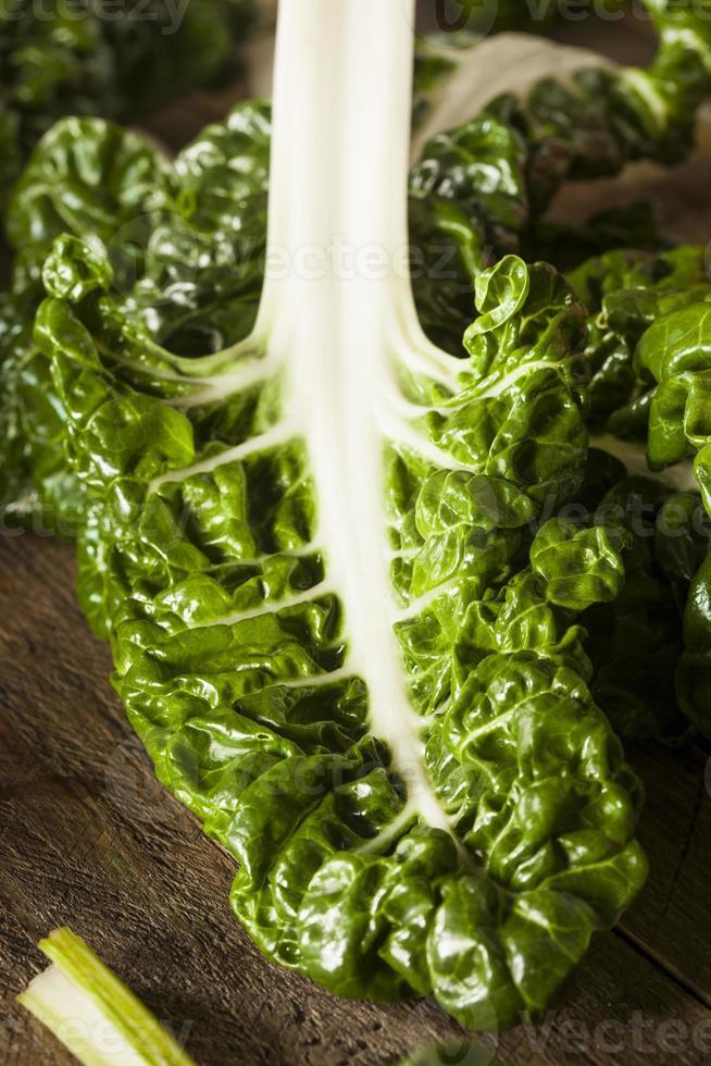 färsk organisk grön chard foto