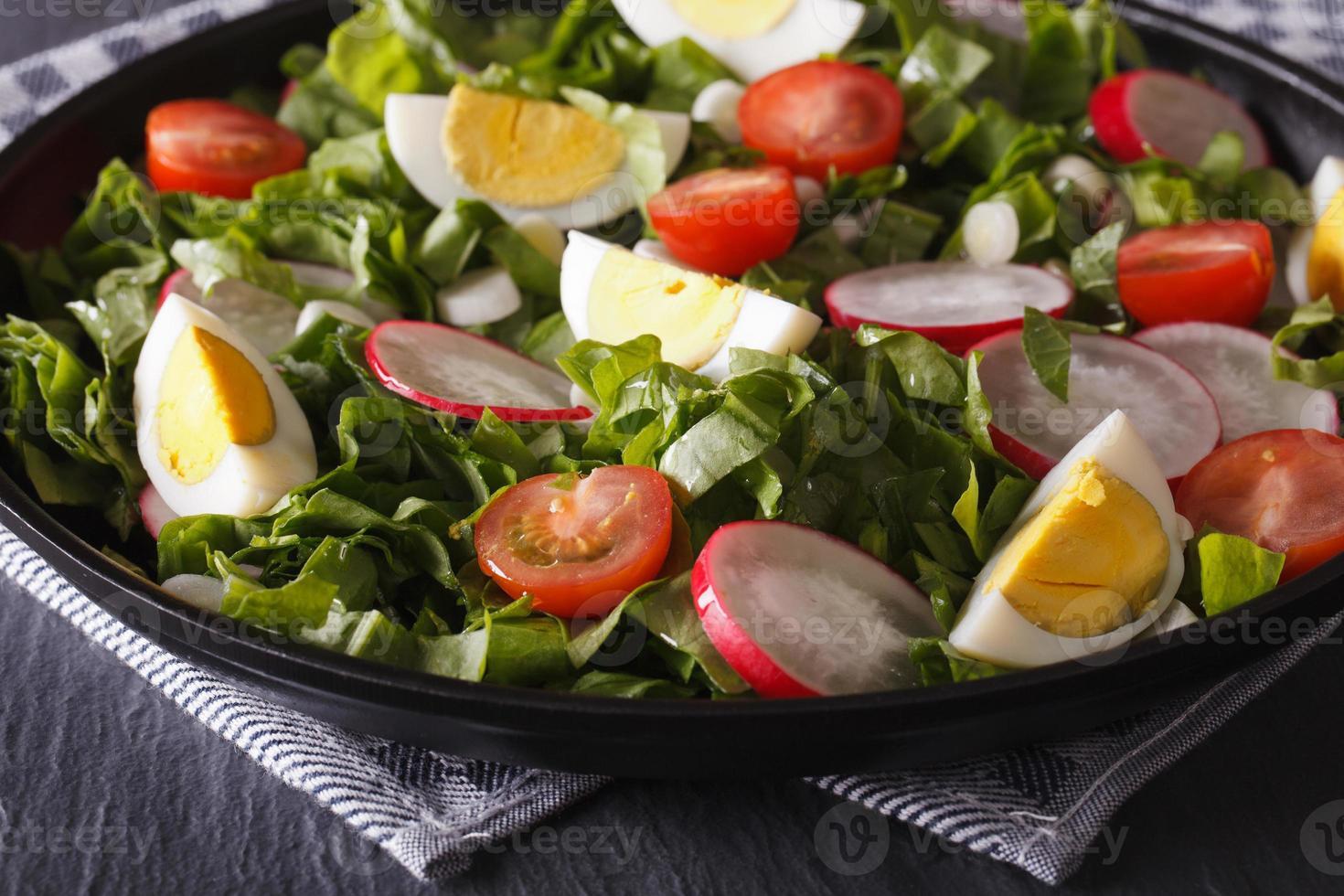 sallad med ägg och vårgrönsaker närbild, horisontell foto