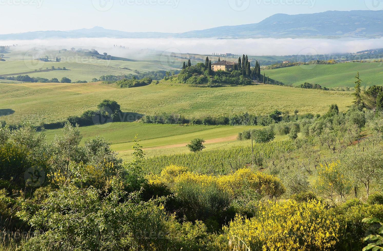 toskanska landskapet. Italien foto