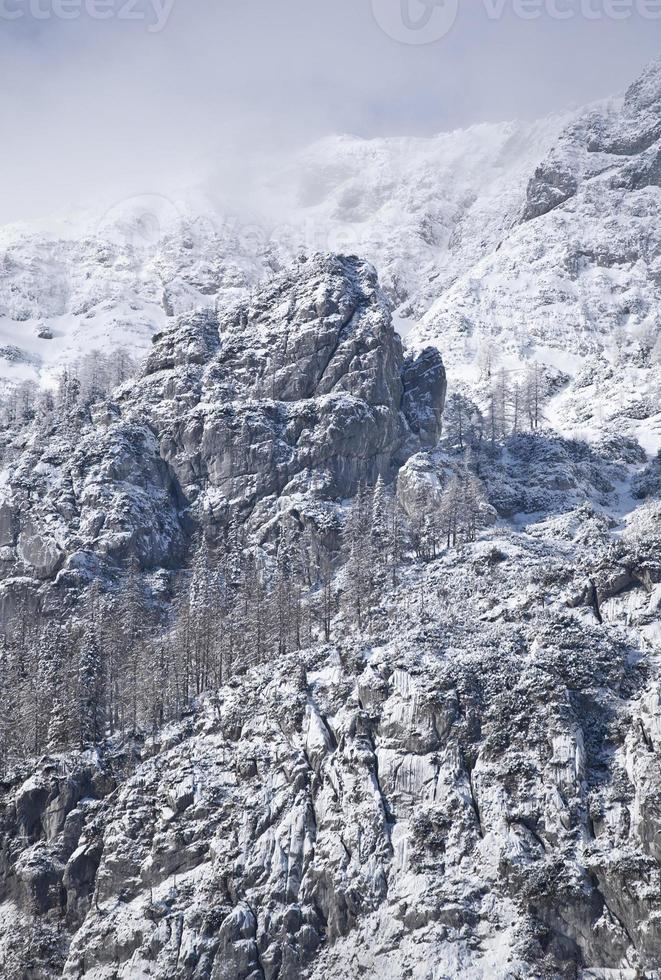 alperna på vintern foto