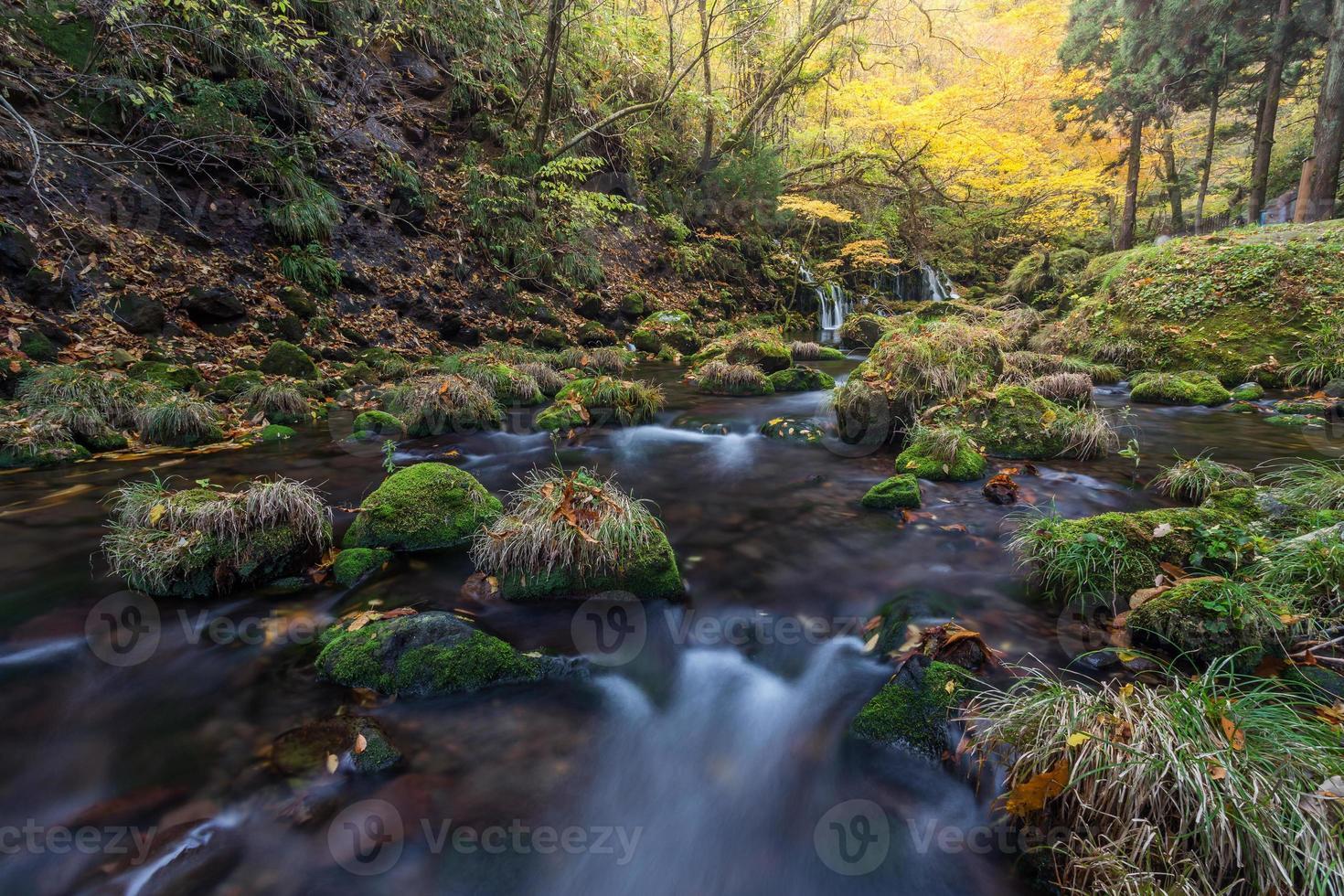 vackert vattenfall i skog, höstlandskap foto