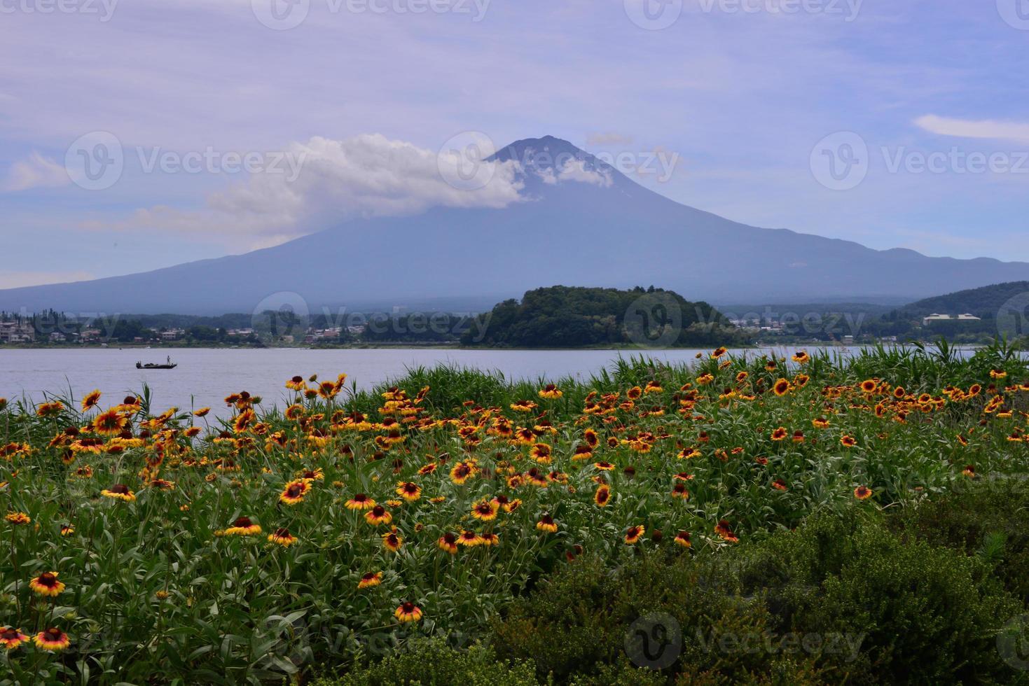 mt fuji och gaillardia blommor foto