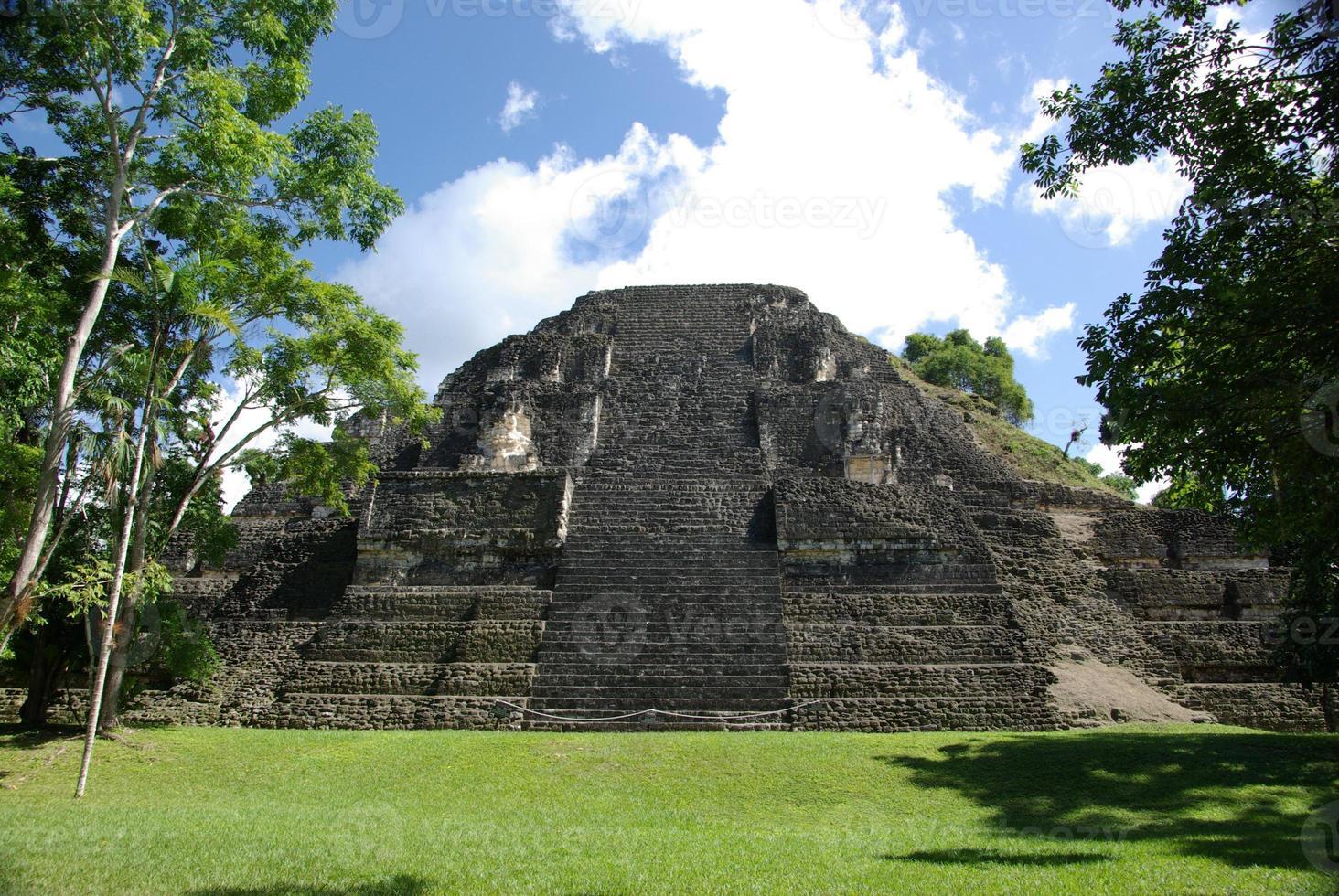 mayan tempel i tikal, guatemala foto