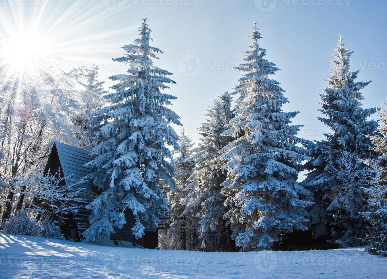 perfekt nyår i de tjeckiska tatraerna foto