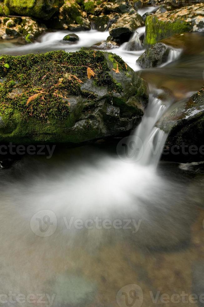 rinnande vattenfall foto