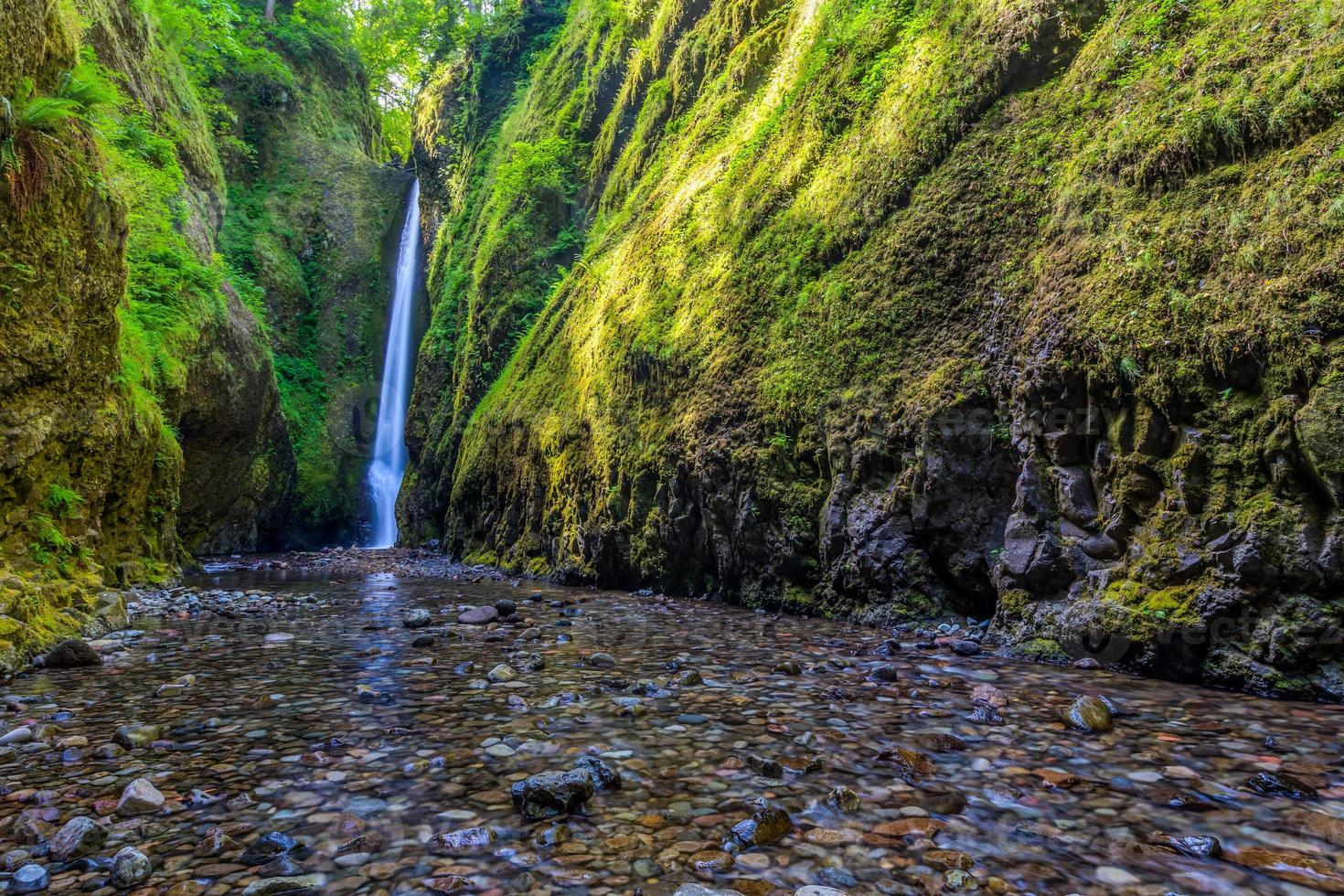 vackert vattenfall och kanjon i Oneonta klyftsled, oregon foto