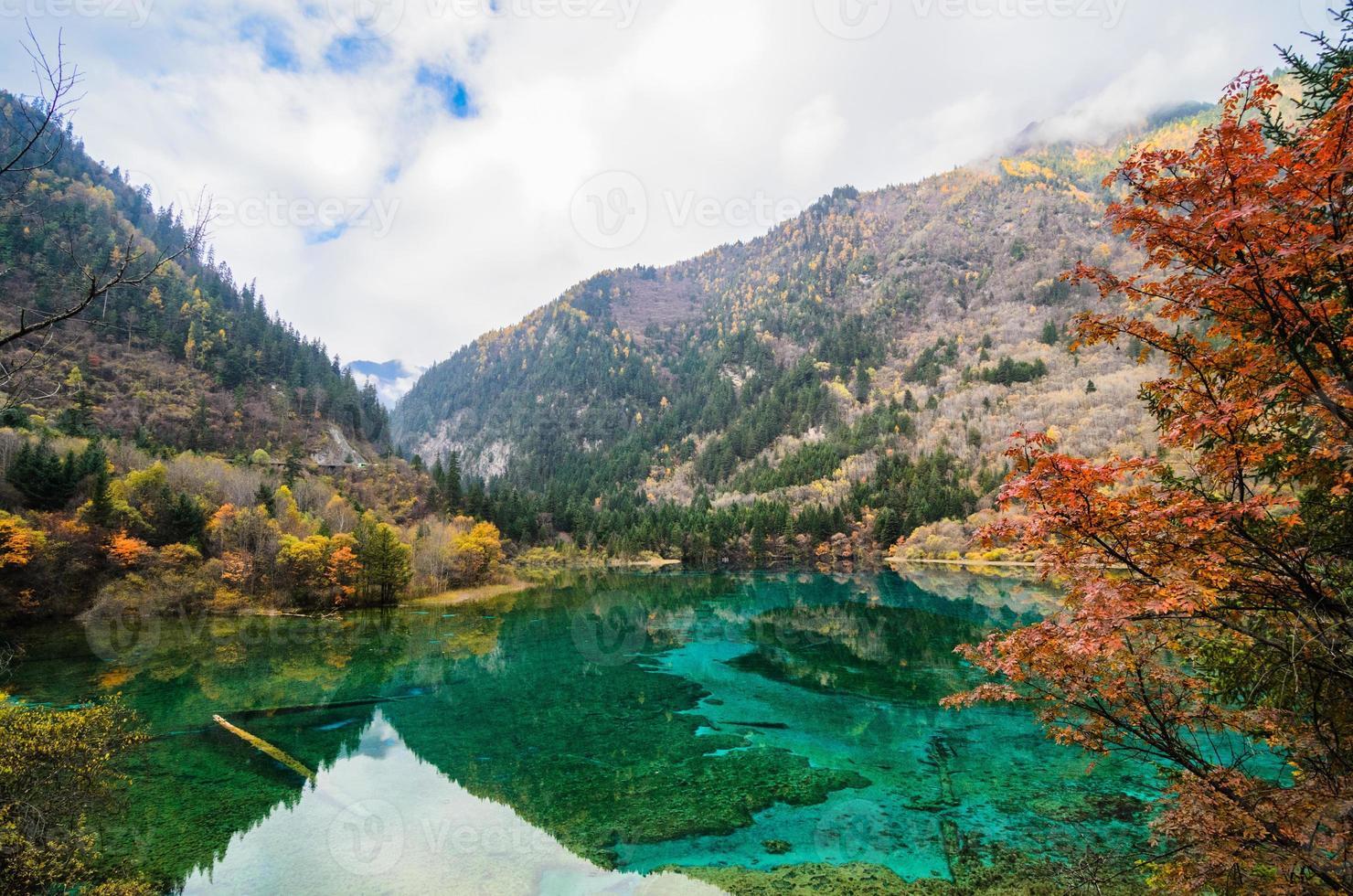underbar höst i jiuzhaigou foto