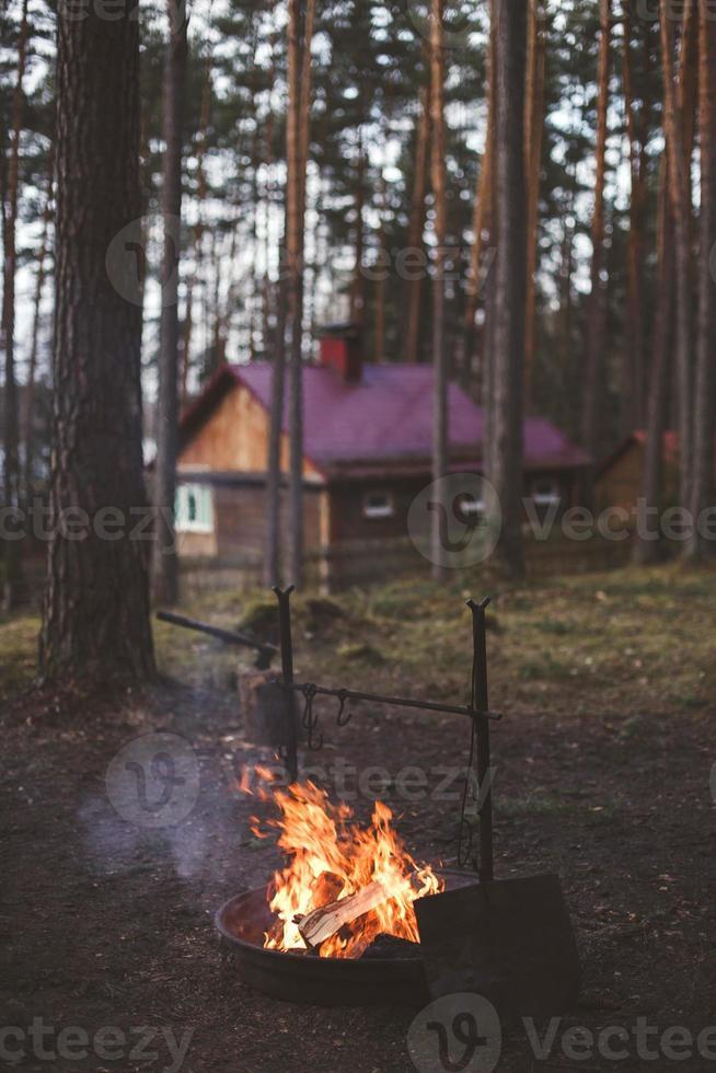 vila vid en eld i skogen foto