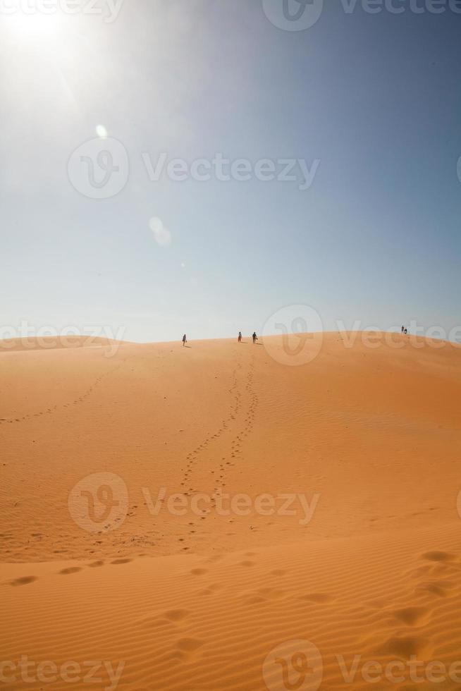resenären i öknen foto