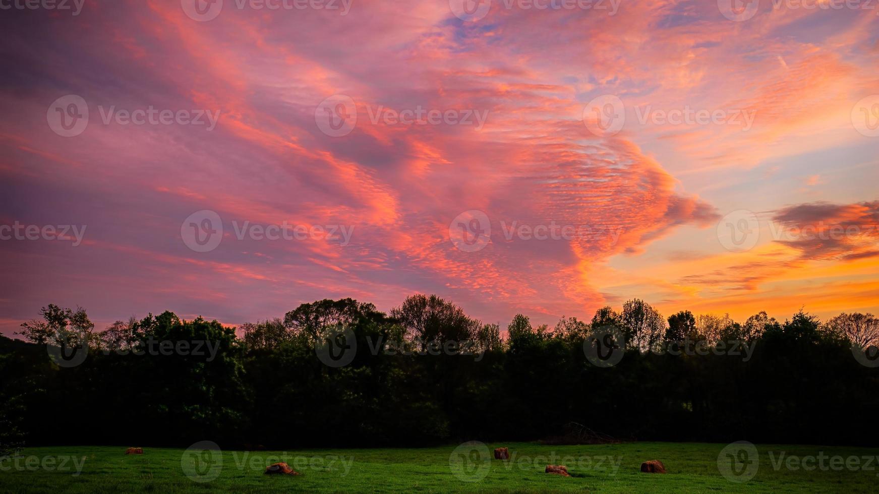 fält vid solnedgången foto