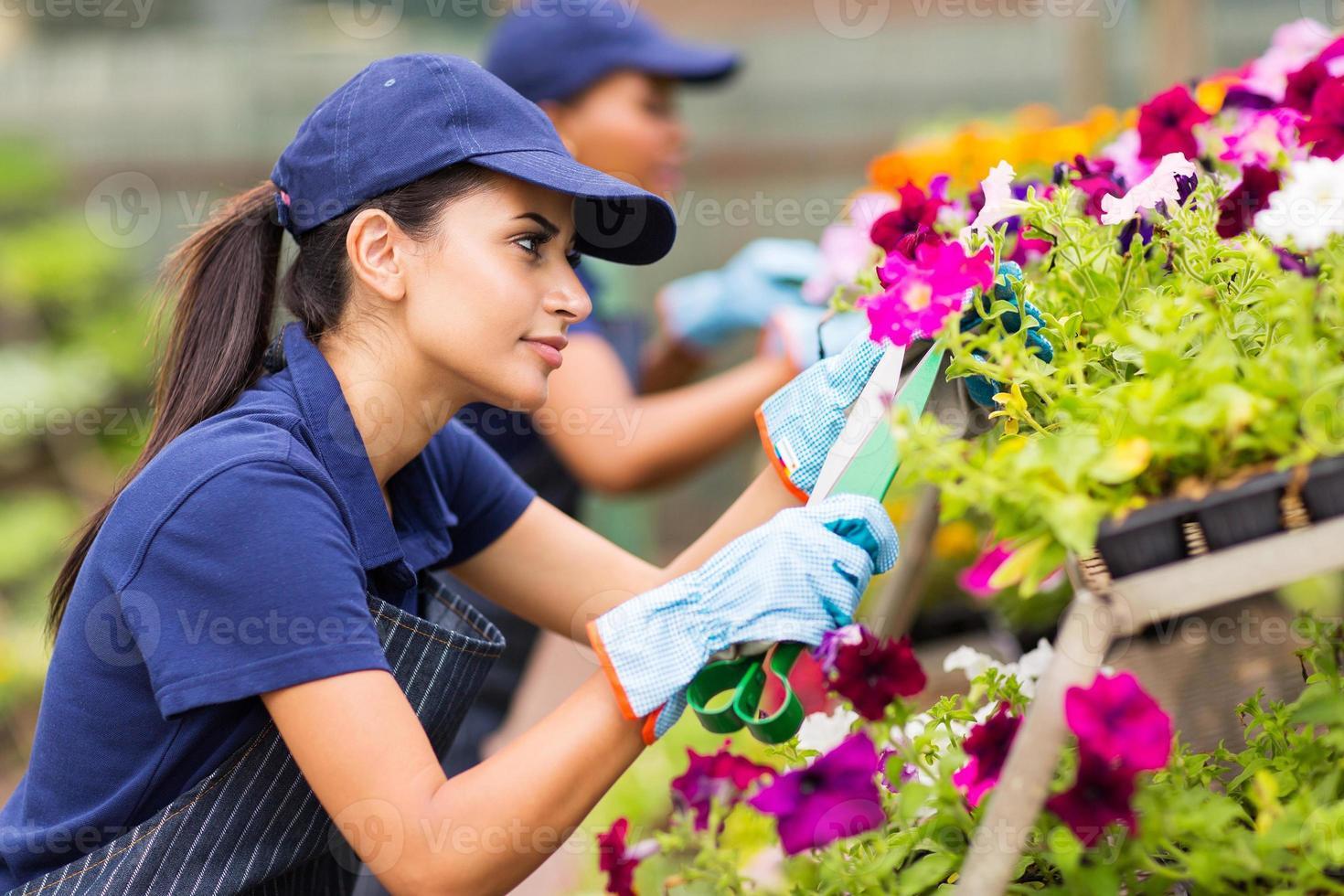 kvinnliga blomsterhandlare som beskär blommor foto
