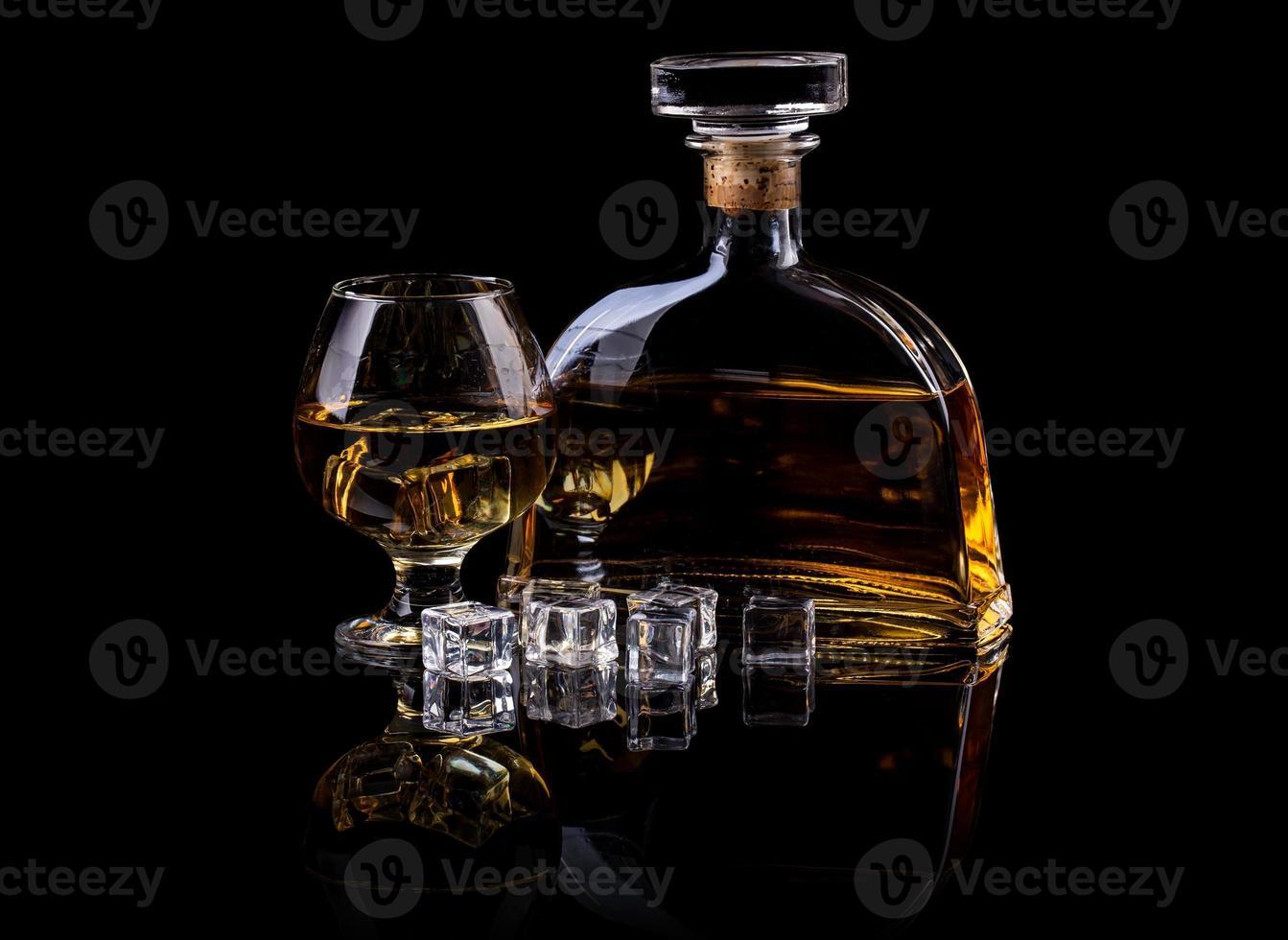 brandy foto