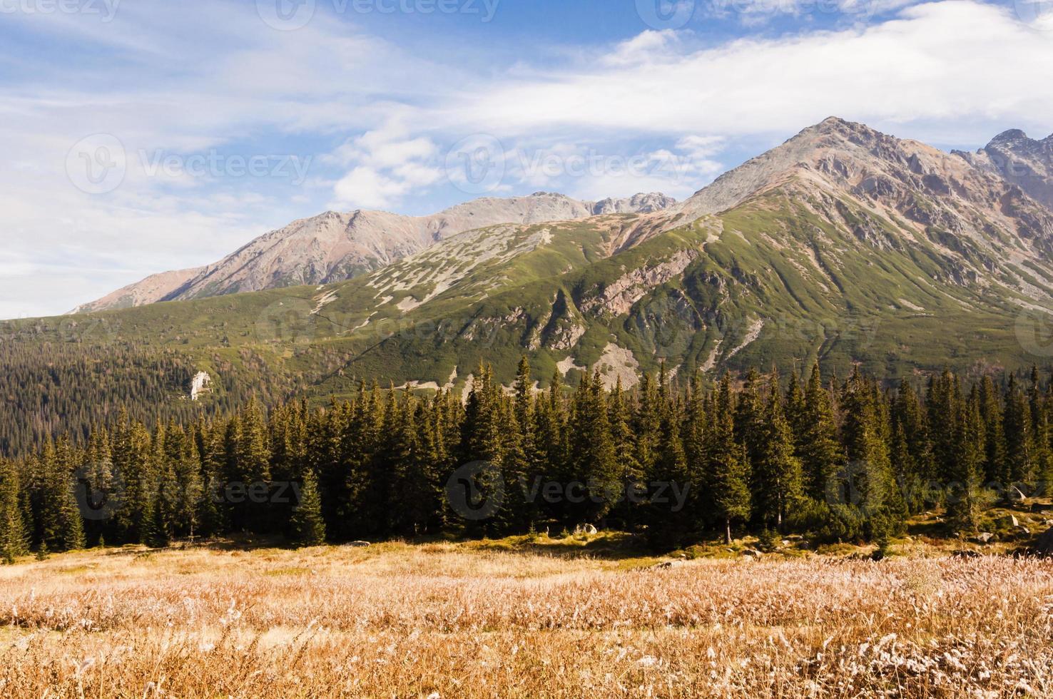 """panorama över bergen: """"zolta turnia"""" foto"""