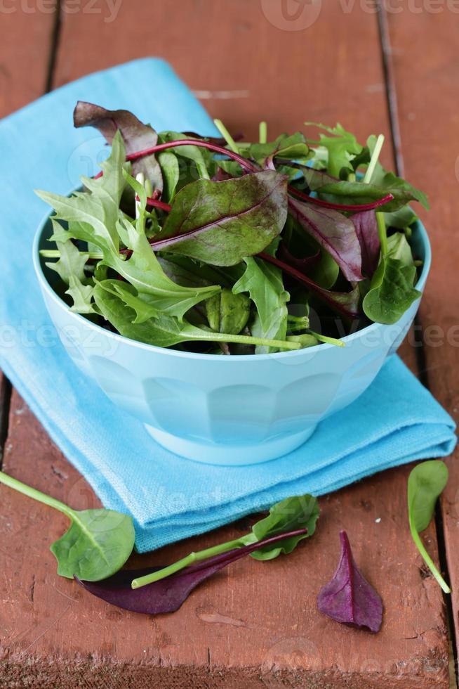 blanda sallad (ruccola, isberg, rödbetor) i en skål foto