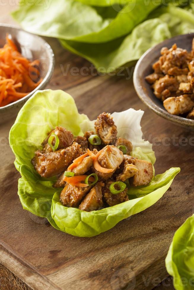 frisk asiatisk kycklingsalladomslag foto