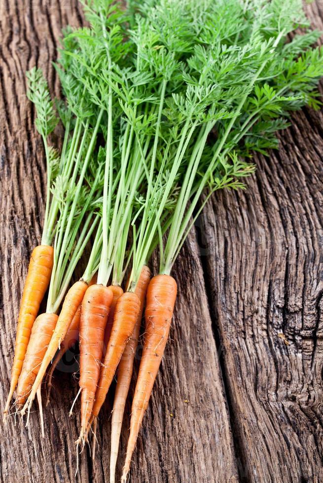 morötter med blad foto