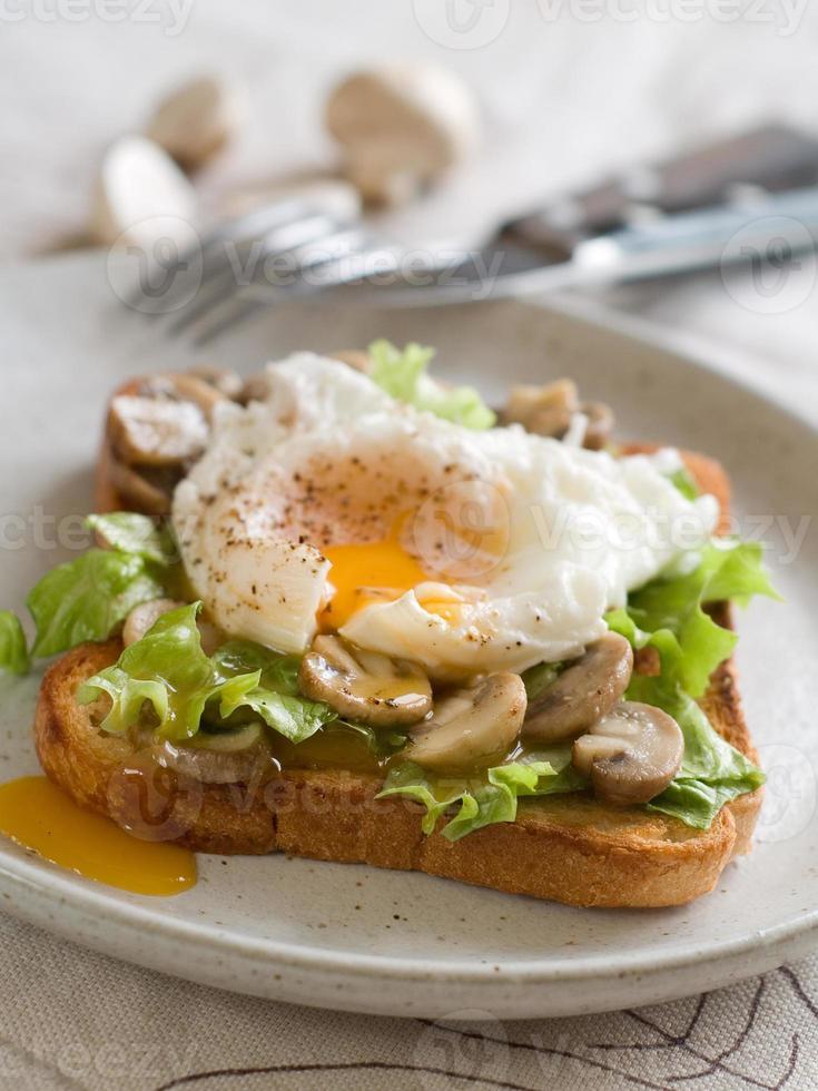 smörgås foto