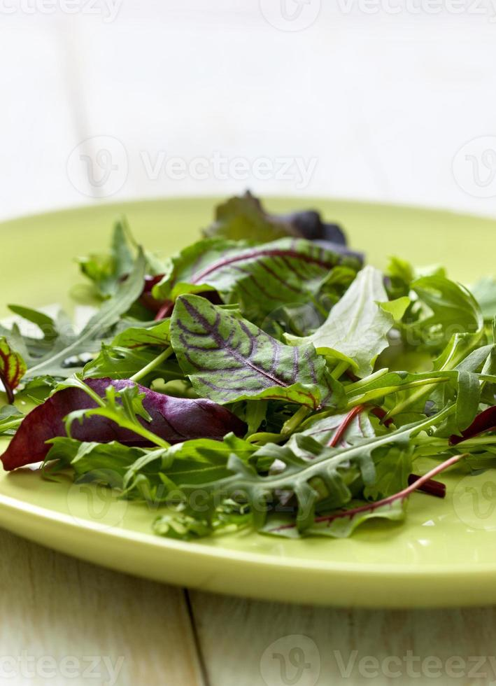 blandning av sallad på en träbakgrund foto
