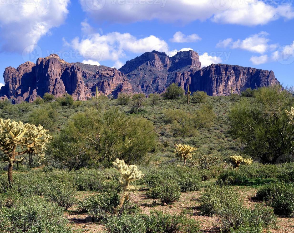 vidskepelse bergen foto