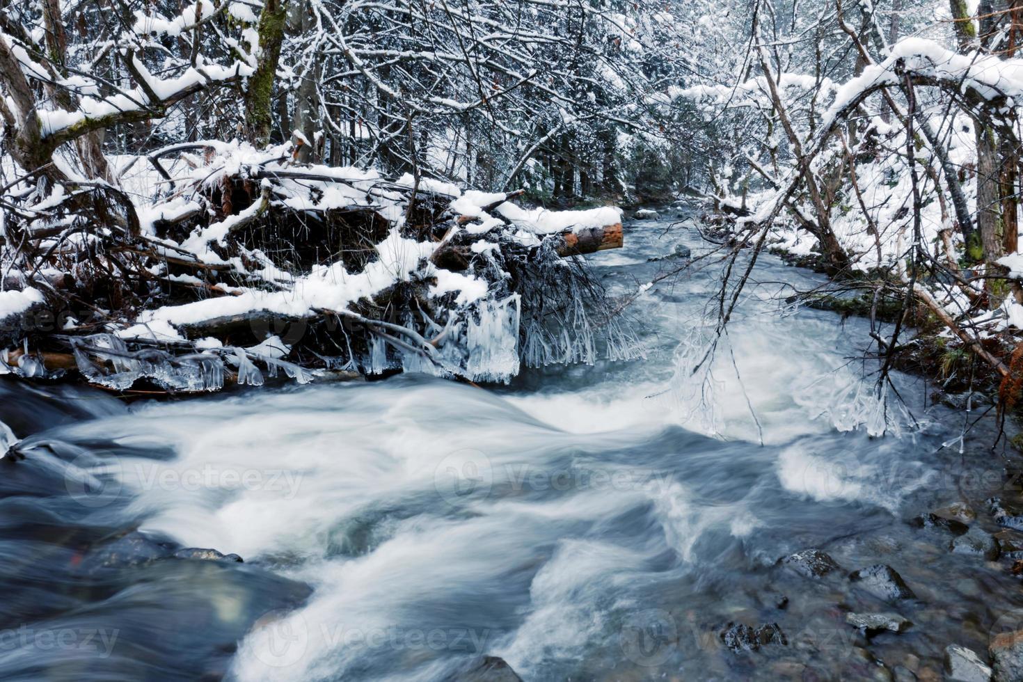 floden på vintern foto