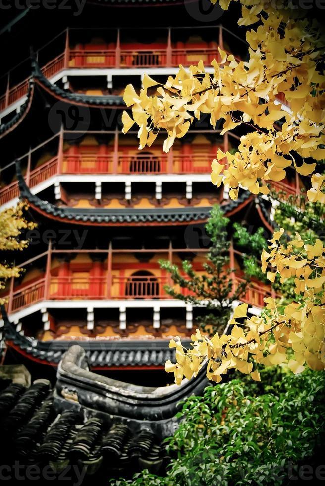 höst i Suzhou, Kina foto